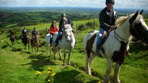 Scenic Horseback Riding Tour through Unspoiled Mountain Pastures of Tipperary, Tipperary, Horseback ...