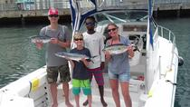 Barbados Bottom Fishing Tour, Barbados, Fishing Charters & Tours