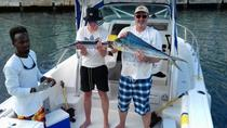 Barbados Fish and Swim Trip, Barbados, Fishing Charters & Tours