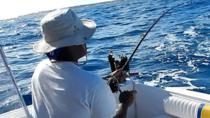 Barbados Shore Excursion: Fish and Swim Tour, Barbados, Day Trips