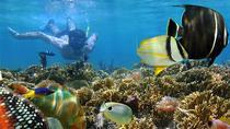 Blue Lagoon Snorkeling and Bat Cave Temple Tour, Kuta, Cultural Tours