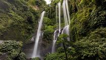 Sekumpul Waterfall and Bedugul Tour, Kuta, Private Day Trips