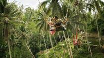 Ubud Swing and Ubud Village Tour, Kuta, Cultural Tours