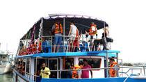 Whale Watching Cruise from Unawatuna, Sri Lanka, Day Cruises