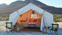 2-Night Glamping Tour on Isla Espiritu Santo from La Paz, La Paz, Nature & Wildlife
