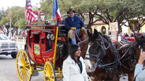 6 Hour Guided Best of Fort Worth Historical Tour, Dallas, Cultural Tours