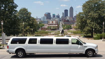 75-Minute Dallas Limousine Tour, Dallas, Cultural Tours