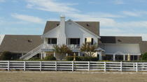 Small-Group Tour: Southfork Ranch and the Series Dallas, Dallas, Movie & TV Tours
