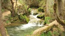 Private Day Tour to pure nature of Zlatibor Mountain, Belgrade, Private Sightseeing Tours