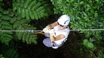 Half-Day Fiji Zip-Line Tour From Coral Coast Hotels, Coral Coast, Day Trips