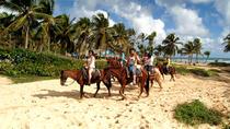 Horseback Riding Adventure Punta Cana, Punta Cana, Horseback Riding