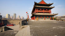 Full-Day Private Tour of Terra-cotta Warriors and City Wall from Xi'an, Xian, Bus & Minivan Tours