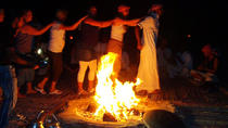 Camel riding and Bedouin dinner and Stargazer, Sharm el Sheikh, Nature & Wildlife