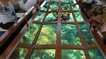 Glass Bottom Boat, Dahab, Glass Bottom Boat Tours