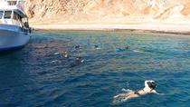 Snorkeling Trip to Giftun Island, Hurghada, Day Cruises