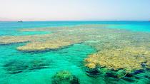 Tiran Island by boat, Sharm el Sheikh, Day Cruises