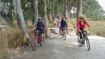Half-Day Hong Kong Cycling Tour Including Dim Sum Lunch, Hong Kong SAR, Bike & Mountain Bike Tours