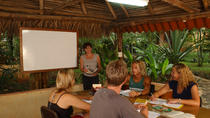 1- or 2-Week Spanish Immersion Program in Tamarindo, Tamarindo