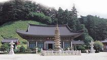 2-Day Bus Tour to Gangwon-do from Seoul, Seoul, Multi-day Tours