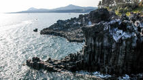 The Volcanic Island Day Tour in Jeju Island - West Course, Jeju, Day Trips