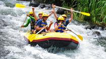 All Inclusive: Ubud River Rafting with Lunch and Transfers, Ubud, 4WD, ATV & Off-Road Tours