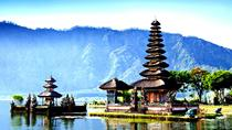 Bali Full Day Water Temples and UNESCO Rice Terraces Tour, Ubud, Cultural Tours