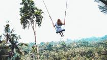 Best of Ubud Tour with Jungle Swing, Ubud