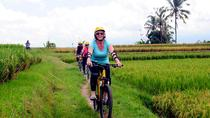 Half-Day Ubud Rice Field and Village Cycling Tour, Ubud, Bike & Mountain Bike Tours