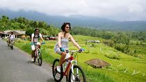 Jatiluwih Bali Unesco Rice Terraces Cycling Tour, Ubud, Bike & Mountain Bike Tours