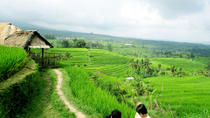 Private Tour: Bali Western Highlights, Bali, Private Sightseeing Tours
