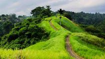Private Tour: Campuhan Ridge Walk and Sightseeing in Ubud, Ubud, Private Sightseeing Tours