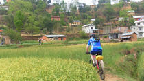 Kathmandu Valley Single Track Mountain Bike Tour, Katmandu