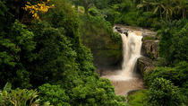 Bali Tegenungan Waterfall, Temple, and Monkey Forest Private Tour, Ubud, Hiking & Camping