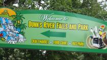 Dunn's River Falls and Luminous Lagoon Tour from Falmouth, Falmouth, Half-day Tours