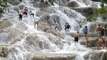 Dunn's River Falls and Luminous Lagoon Tour from Montego Bay and Grand Palladium, Montego Bay, Day ...