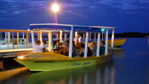Luminous Lagoon Tour from Montego Bay and Grand Palladium, Montego Bay, Night Tours