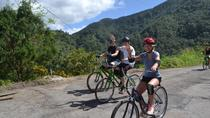 Private Bicycle Tour of Jamaica's Blue Mountains from Falmouth, Falmouth, Private Day Trips