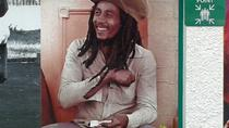 Private Full-Day Bob Marley Excursion from Montego Bay and Grand Palladium, Montego Bay, Private ...