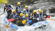 Private Rio Bueno River Adventure from Runaway Bay