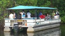 Private YS Falls and Black River Safari from Negril, Negril, Private Sightseeing Tours