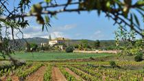 Penedes Region Wine and Food Tour with Transport from Barcelona, Barcelona, Day Trips