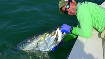Biscayne Bay Pisos costeros de pesca, Miami, Fishing Charters & Tours