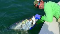 Inshore Flats Fishing, Miami, City Tours