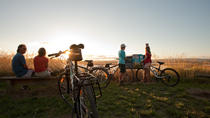 Guided Twilight Cycle Tour of the Estuary and Urban Winery, Napier, Wine Tasting & Winery Tours
