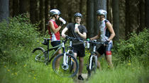 Half-Day Self Guided Mountain Biking Experience from Napier, Napier, Bike & Mountain Bike Tours