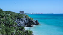 Exclusive Private Tour to Tulum Turtle Experience and Cenote, Playa del Carmen, Private Sightseeing ...