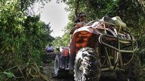 Private Jungle Tour ATV Zipline Cenote Half day trip, Playa del Carmen, 4WD, ATV & Off-Road Tours