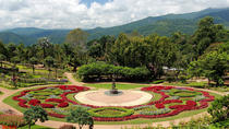 1 Day Car Tour 4: Visit Doi Tung botanical gardens plus the Golden Triangle and Chiang Saen, Chiang ...