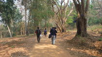 Private Trekking and Local Temple Day Tour in Chiang Rai, Chiang Rai