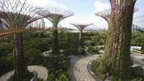 Morning Workout at Gardens By The Bay and Walk or Jog to Chinatown for Breakfast, Singapore, 4WD, ...